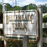Milton GA Neighborhood Bellemeade Farms