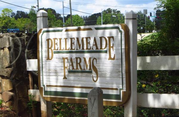Milton GA Neighborhood Bellemeade Farms